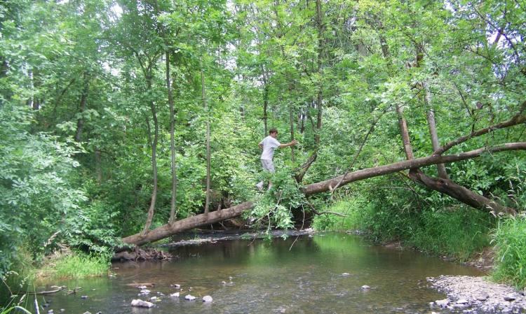 mccormick park st. helens oregon columbia county