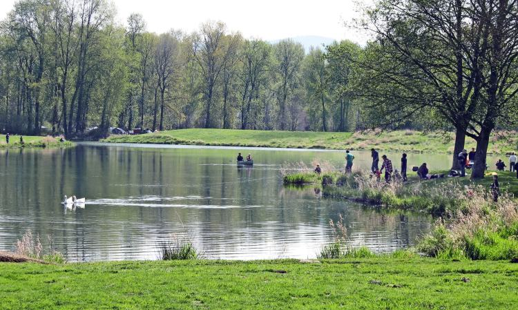 Trojan Park Lake Columbia County Oregon