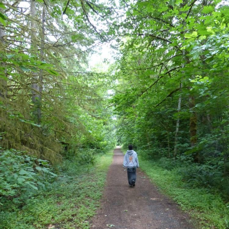 cz trail crown z nehalem divide trailhead to wilark vernonia pittsburgh oregon