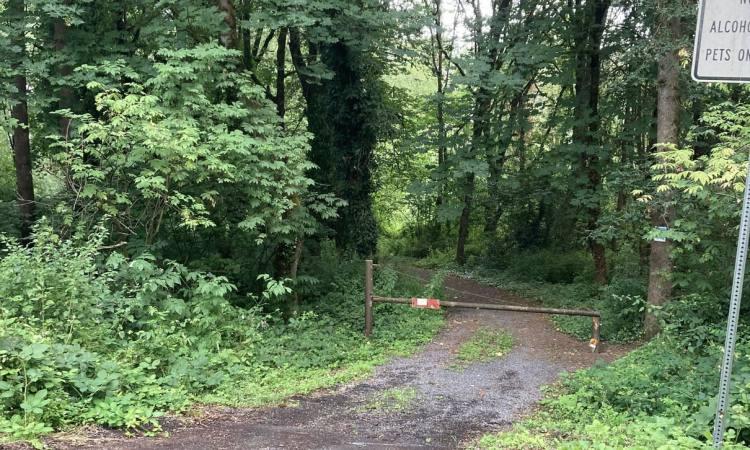 dalton lake st. helens columbia city bike trail oregon