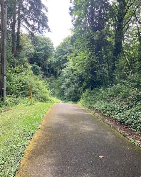 Dalton Lake columbia city bike trail st. helens oregon