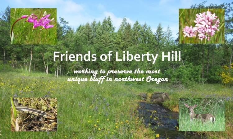 friends of liberty hill bluff conservation camas meadow oregon