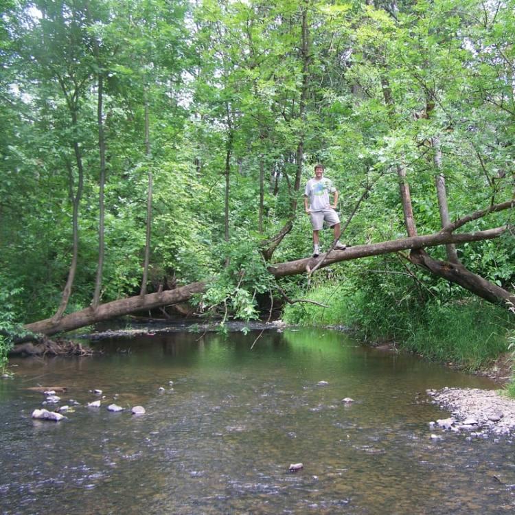 mccormick park mcnulty creek st. helens oregon
