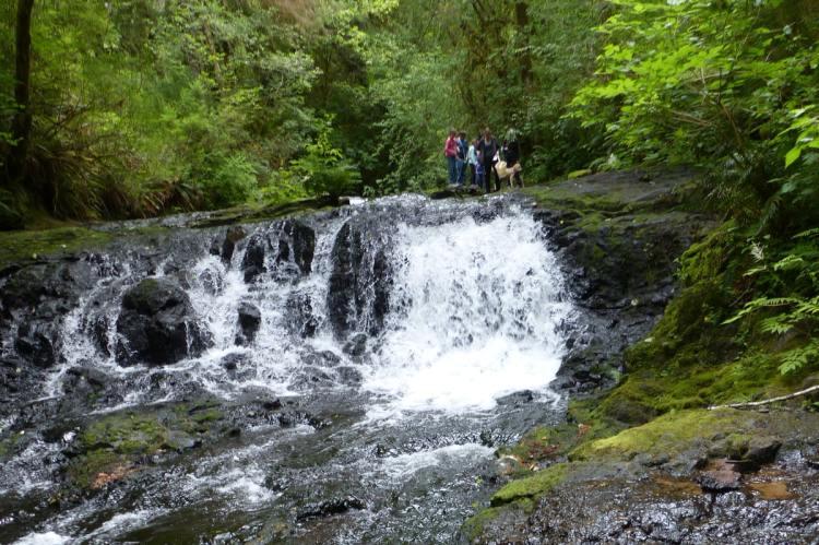 barrier falls gnat creek trail oregon