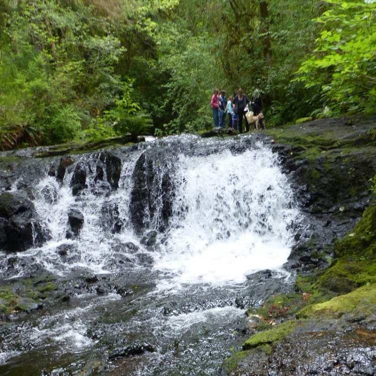 gnat creek trail barrier falls clatskanie oregon