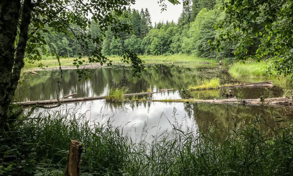 gunners lake lakes columbia county oregon