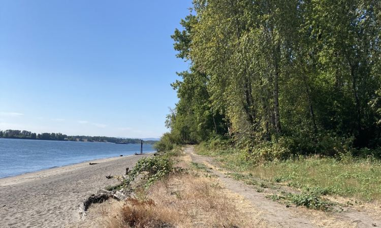 Willow Bar Islands hike Sauvie Island Columbia County oregon