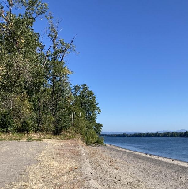 Willow Bar Islands hike Sauvie Island Columbia County