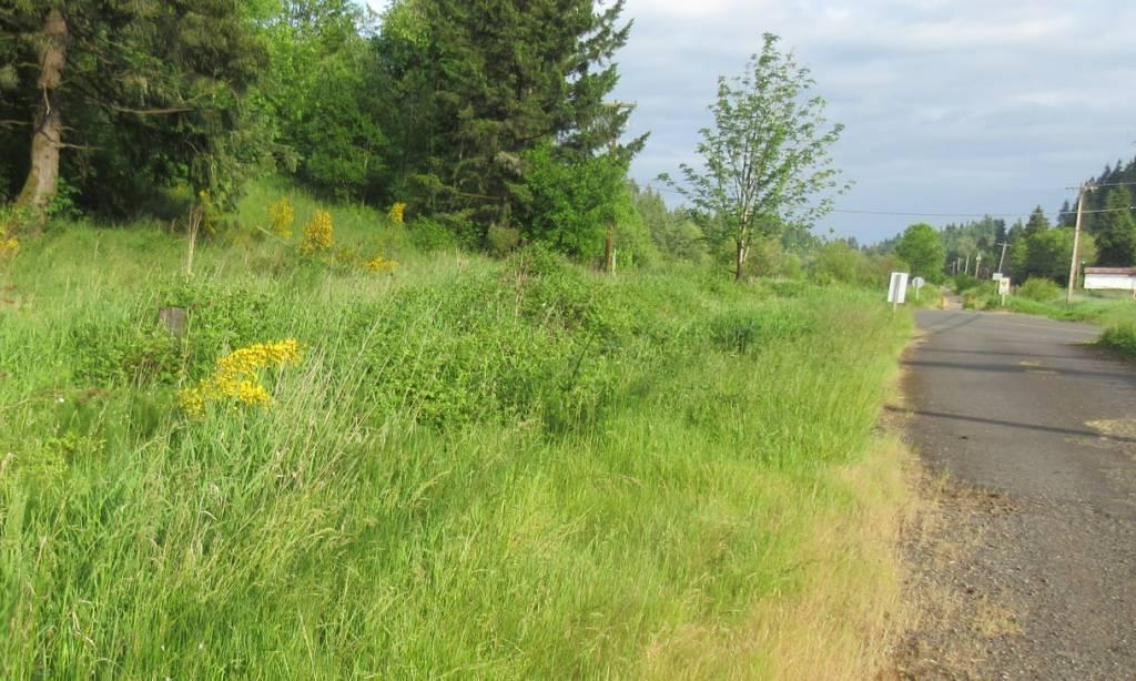 cz crown zellerbach trail pisgah trailhead oregon columbia county