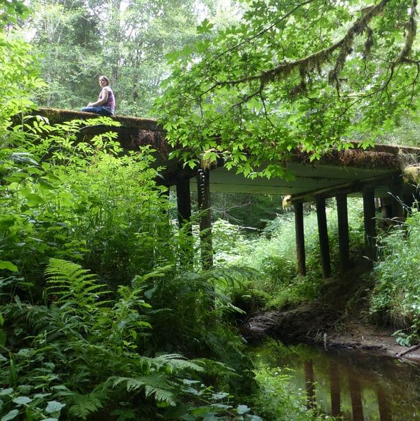 cz trail crown zellerbach vernonia pittsburg oregon wilark trailhead