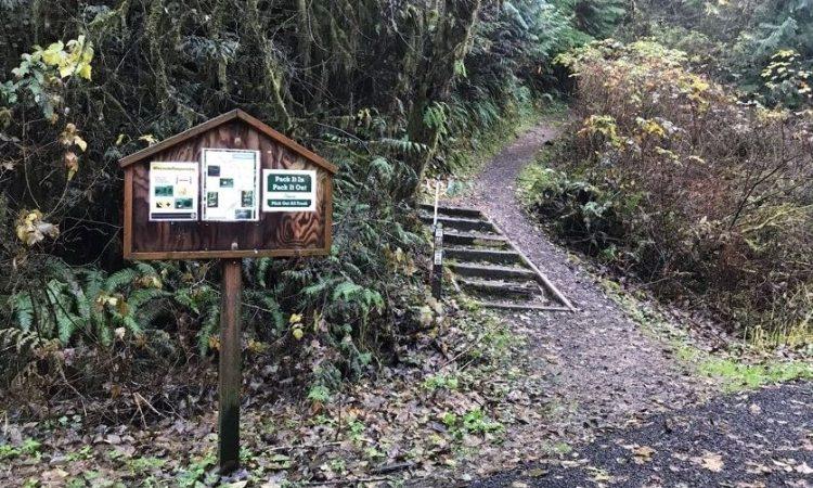 Gnat Creek Campground trail clatskanie oregon