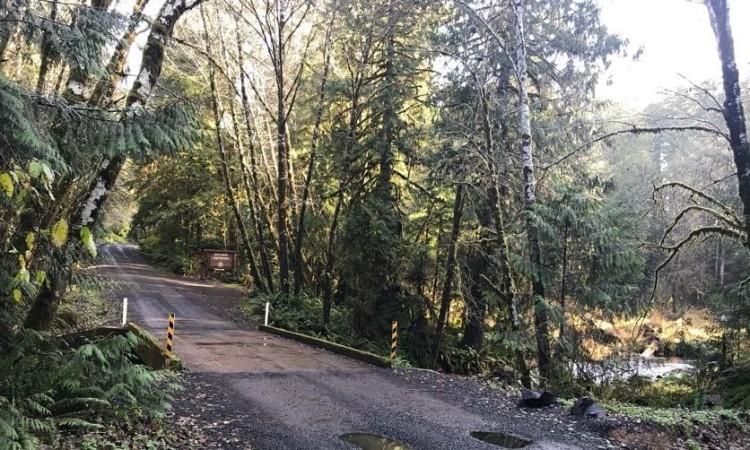 Gnat Creek Campground clatskanie oregon