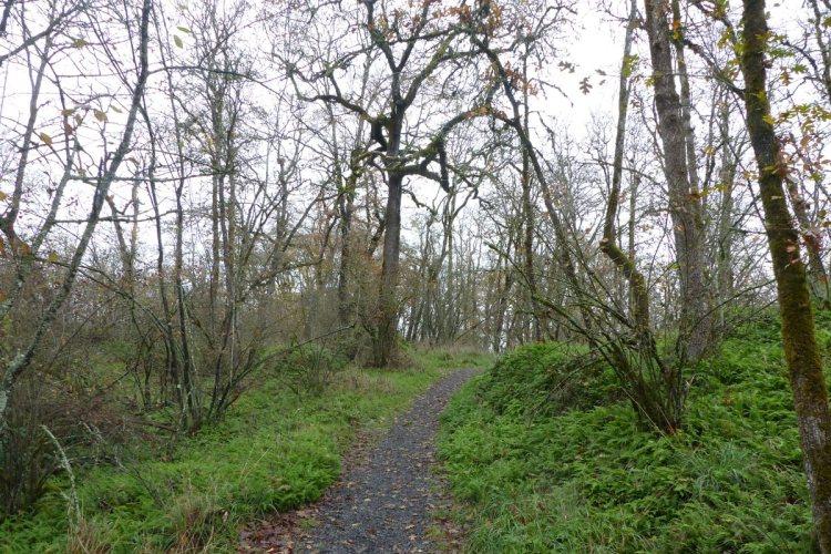 nob hill nature park st. helens oregon columbia county