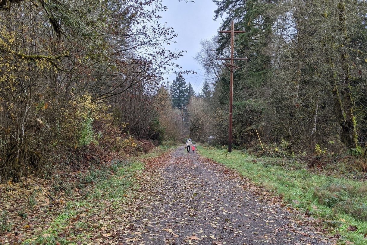 cz trail crown zellerbach ruley trailhead st. helens columbia county oregon