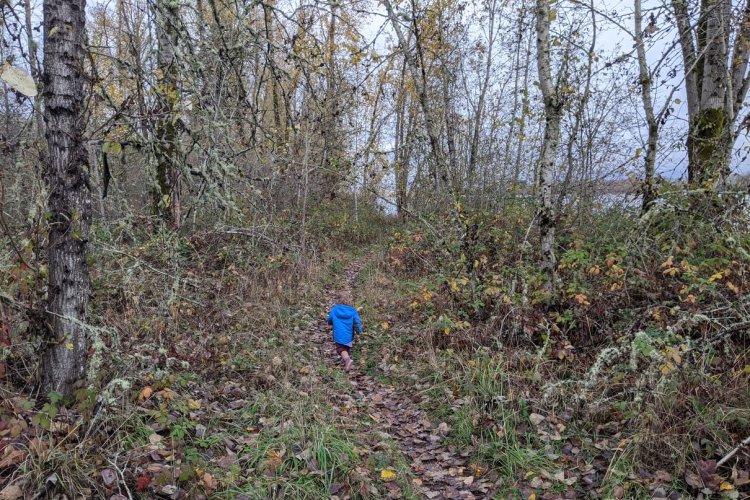 Willow Bar Islands Trail Sauvie Island columbia county oregon