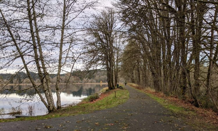 Vernonia Lake City Park Oregon Columbia County