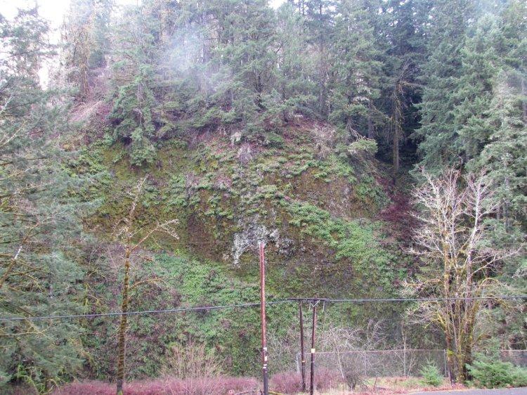Cool Geology CZ Trail Crown Zellerbach Bonnie Falls Pisgah Columbia County Oregon