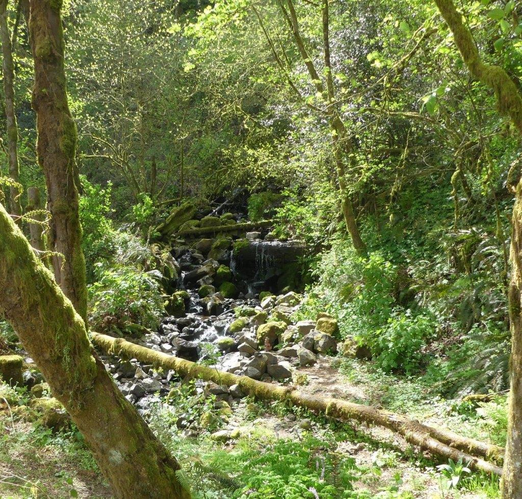 stream Welter Cemetery Trojan Park Rainier Goble Prescott Columbia County oregon