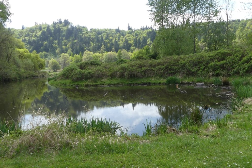 Trojan Park lake pond marsh goble prescott rainier columbia county oregon