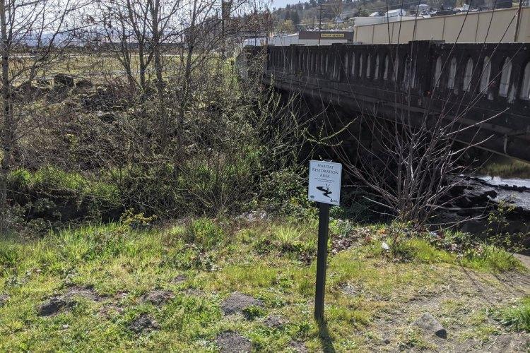 rainier riverfront park columbia county oregon habitat restoration area