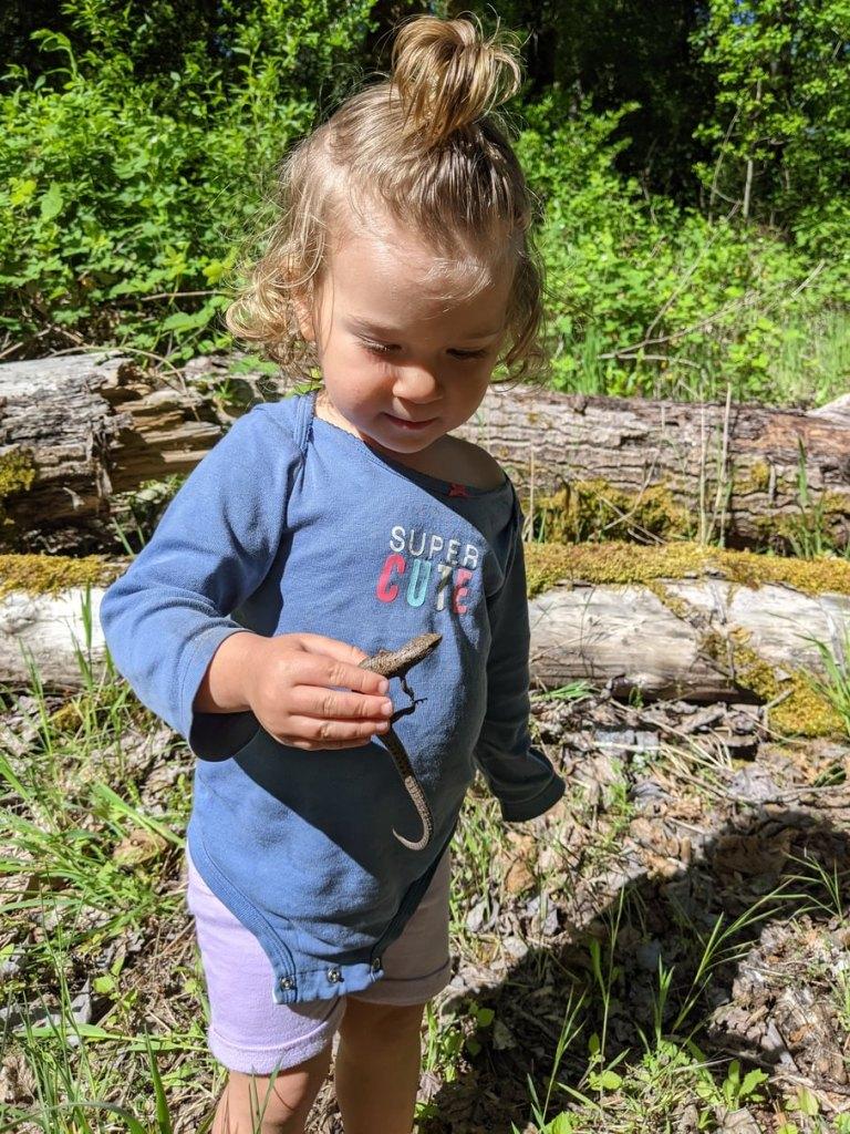 baby with alligator lizard Dibblee Beach County Park Dibblees Columbia Northwest Oregon
