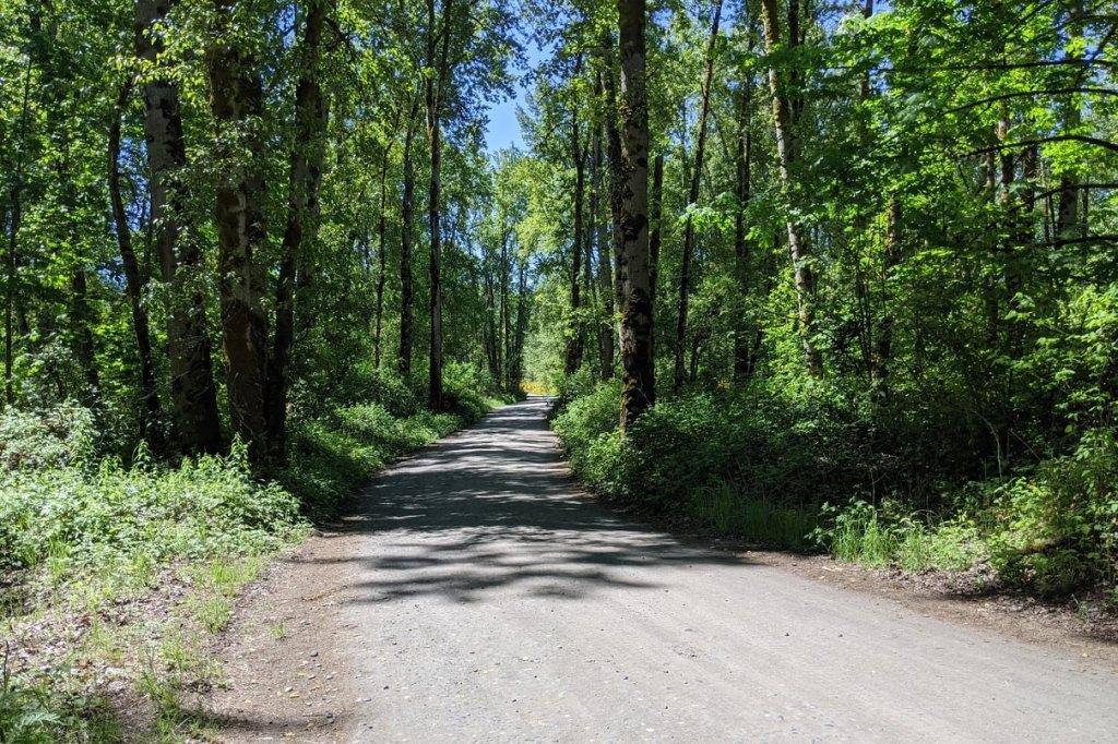 Dibblee Beach County Park Dibblees Columbia Northwest Oregon
