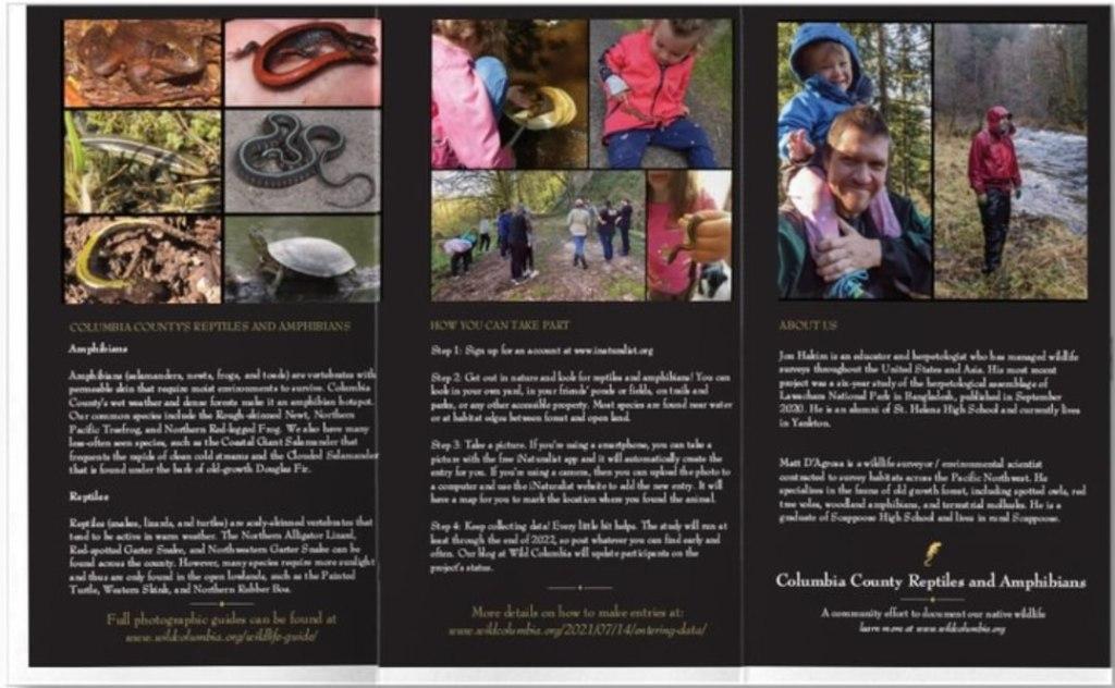 Columbia County Reptiles and Amphibians brochure Oregon