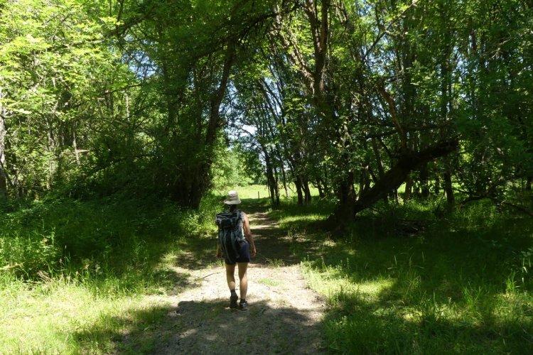 Mud Lake Sauvie Island Westside Unit Columbia County Oregon