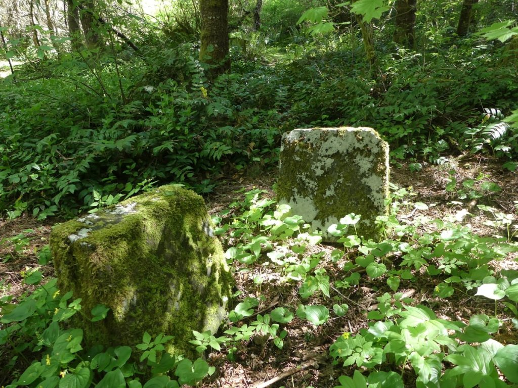 unmarked gravestones St. Joseph Polish Catholic Cemetery Wilark Pioneer Cemetery Columbia County Oregon