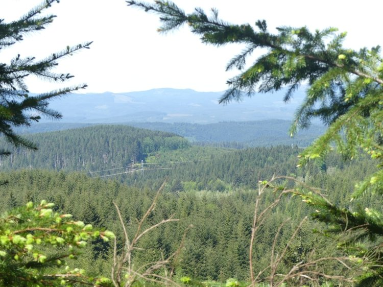view from Camp 9 Road Wilark Pioneer Cemetery Columbia County Oregon