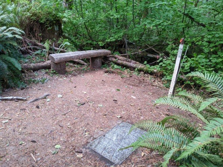 Four County Point Trail Tillamook State Forest Columbia Clatsop Tillamook Washington Oregon